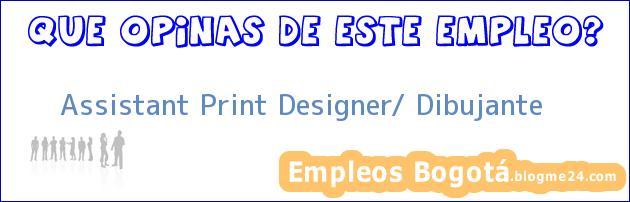 Assistant Print Designer/ Dibujante