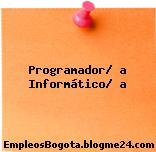 Programador/ a Informático/ a