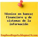 Técnico en banca: financiero y de sistemas de la información