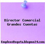 Director Comercial Grandes Cuentas