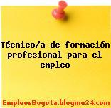 Técnico/a de formación profesional para el empleo