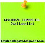 GESTOR/A COMERCIAL (Valladolid)