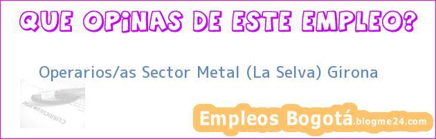 Operarios/as Sector Metal (La Selva) Girona