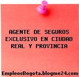 AGENTE DE SEGUROS EXCLUSIVO EN CIUDAD REAL Y PROVINCIA