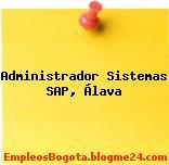 Administrador Sistemas SAP, Álava