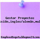 Gestor Proyectos Traducción.ingles/alemán.multinac