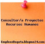 Consultor/a Proyectos Recursos Humanos