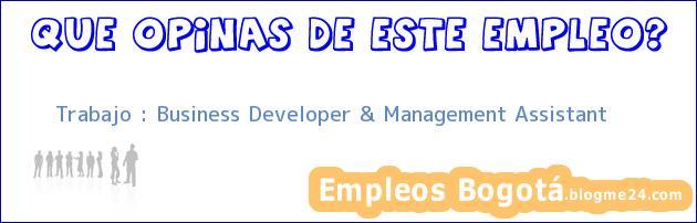 Trabajo : Business Developer & Management Assistant