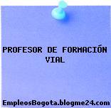 Profesor De Formación Vial