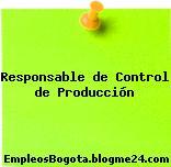 Responsable de Control de Producción