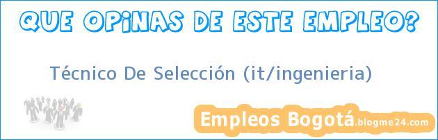 Técnico De Selección (it/ingenieria)
