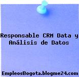 Responsable CRM Data y Análisis de Datos