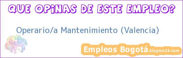 Operario/a Mantenimiento (Valencia)