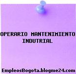 OPERARIO MANTENIMIENTO INDUTRIAL