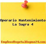 Operario Mantenimiento La Sagra 4