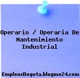 Operario / Operaria De Mantenimiento Industrial