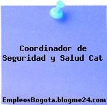 Coordinador de Seguridad y Salud Cat