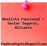 Analista Funcional – Sector Seguros, Alicante