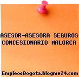 ASESOR-ASESORA SEGUROS CONCESIONARIO MALORCA
