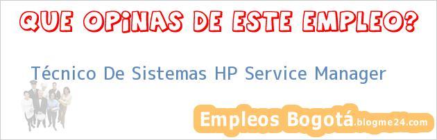 Técnico De Sistemas HP Service Manager