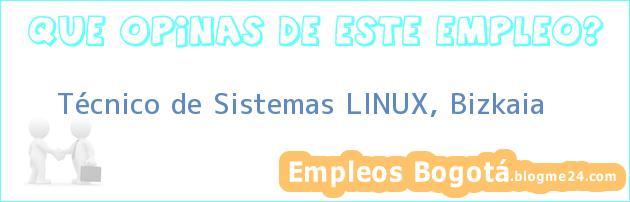 Técnico de sistemas Linux, Bizkaia