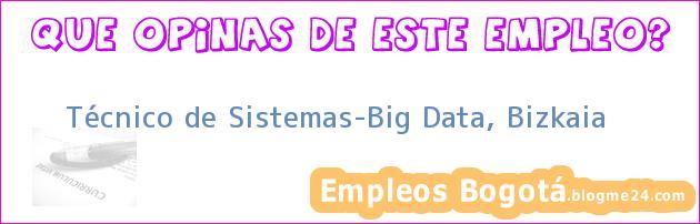 Técnico de Sistemas-Big Data, Bizkaia