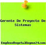 Gerente De Proyecto De Sistemas